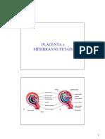 placenta_e_membranas_fetais
