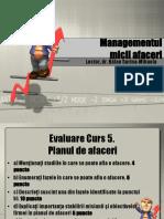Curs 5 Managementul Micilor Afaceri_BalanSM