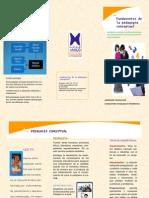 folleto de pedadoia conceptual