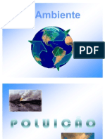 Poluição-Ambiental