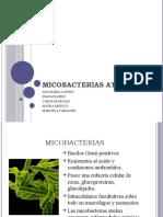 MICOBACTERIAS (2)