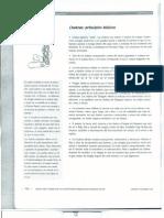 Chakras Manual