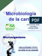 06 MICROBIOLOGIA DE LA CARNE