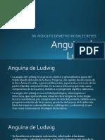 Anguina de Ludwig