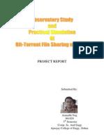 Bit Torrent Report