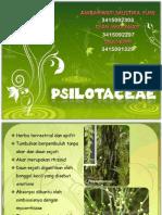 psilotaceae