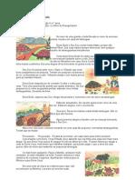 A FAMÍLIA DAS TARTARUGAS Historia 39