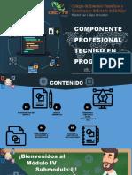 COMPONENTE PROFESIONAL TECNICO EN PROGRAMACIÓN