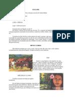 FOLCLORE Historia 63