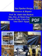 Oil and Gas Pipeline Design and Maintenance