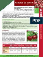Cer_2012_FT_Variétes_de_cerises-SP