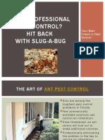 Need Professional Ant Control? Hit back with Slug-A-Bug
