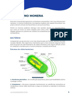 BIO AP Microbiologia Reino Monera