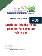 Protocole de Recherche Manantsoa Pa