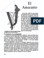 14-el-amaranto