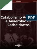 Catabolismo Aeróbico e Anaeróbico Dos Carboidratos