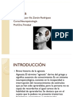 Agnosia PWP2003 Corregida