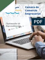 Diplomados de Especialización - Cámara de Comercio Empresarial
