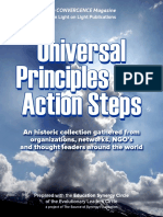 Universal Principles and Action Steps