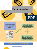 GESTION DE INTANGIBLES