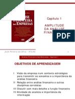 AnaFin - Cap1