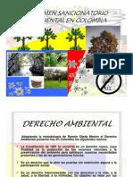 El Regimen sancionatorio ambiental
