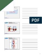 8 Fisiologia Cardiovascular e Renal 2