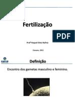3- FINAL Fertilização