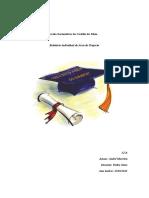 Relatório individual de area de projecto de André Moreira