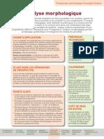 Futuribles Analyse Morphologique 2