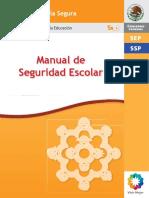 word Manual de Seguridad-Web 290212 PDF (1)