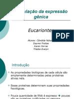 REGULAÇÃO DA EXPRESSÃO GÊNICA EM EUCARIONTES