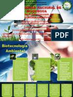 BIOTECNOLOGIA AMBIENTAL