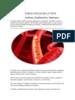BASES BIOLOGICAS DE LA VIDA