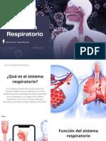 Sistema Respiratorio Dúo #3
