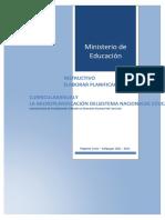 Instructivo-de-PCA-y-Microplanificación-2021-final