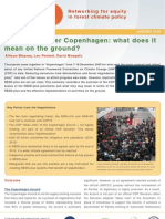 REDD after Copenhagen - what does it mean on the ground[pdf