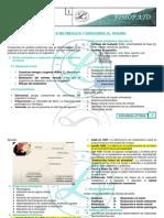 Fsp r1-t11 Respuesta Metabolica Al Trauma