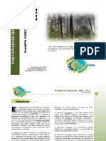 Planeta Forestal Estructura Organizacional