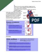 Sistema Circulatorio y Excretor tp 6