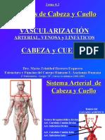 VASCULARIZACION ARTERIAL Y VENOSA CABEZA Y CUELLO