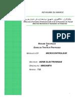 M21 Microcontrôleur-GE-MMO