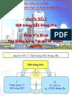 ThitruongBDS(T.Binh-HVTC)