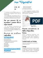 resumo fisio sistema respiratorio