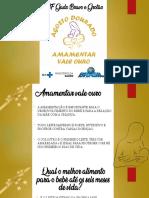 AMAMENTACAO 2