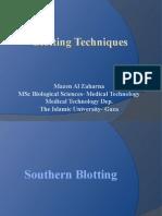Blotting-techniques
