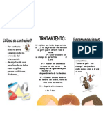 folleto de pediculosis