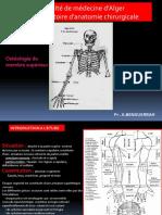 Membre Superieur Osteologie