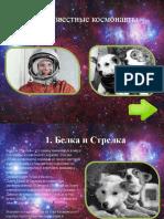 Космонавты (География)