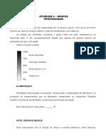 Atividade 8 livro - Grupos profissionais (2)